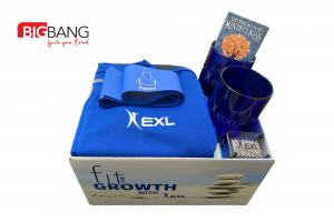 Bang Box for EXL Fit for Growth